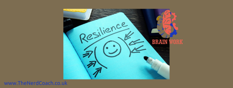 The resilient postdoc: building your resilience muscles